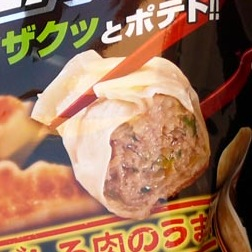o'zack gyoza-flavored chips